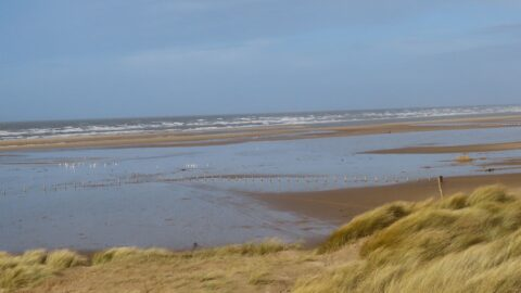 Over 30 seasonal rangers to be recruited in Sefton to manage beach car parks and keep our coastline clean