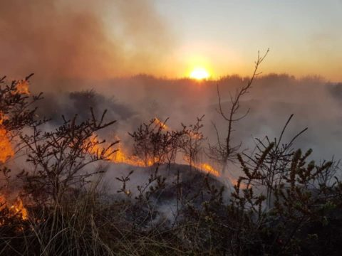 Plea to stay away from our coast after rise in sand dunes fires