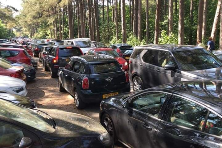 Crowds of people visited Formby