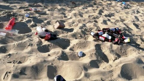 Selfish visitors leave beaches looking like 'morning after Glastonbury'