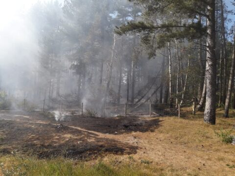 Large fires in Ainsdale and Formby spark safety warnings during hot weather