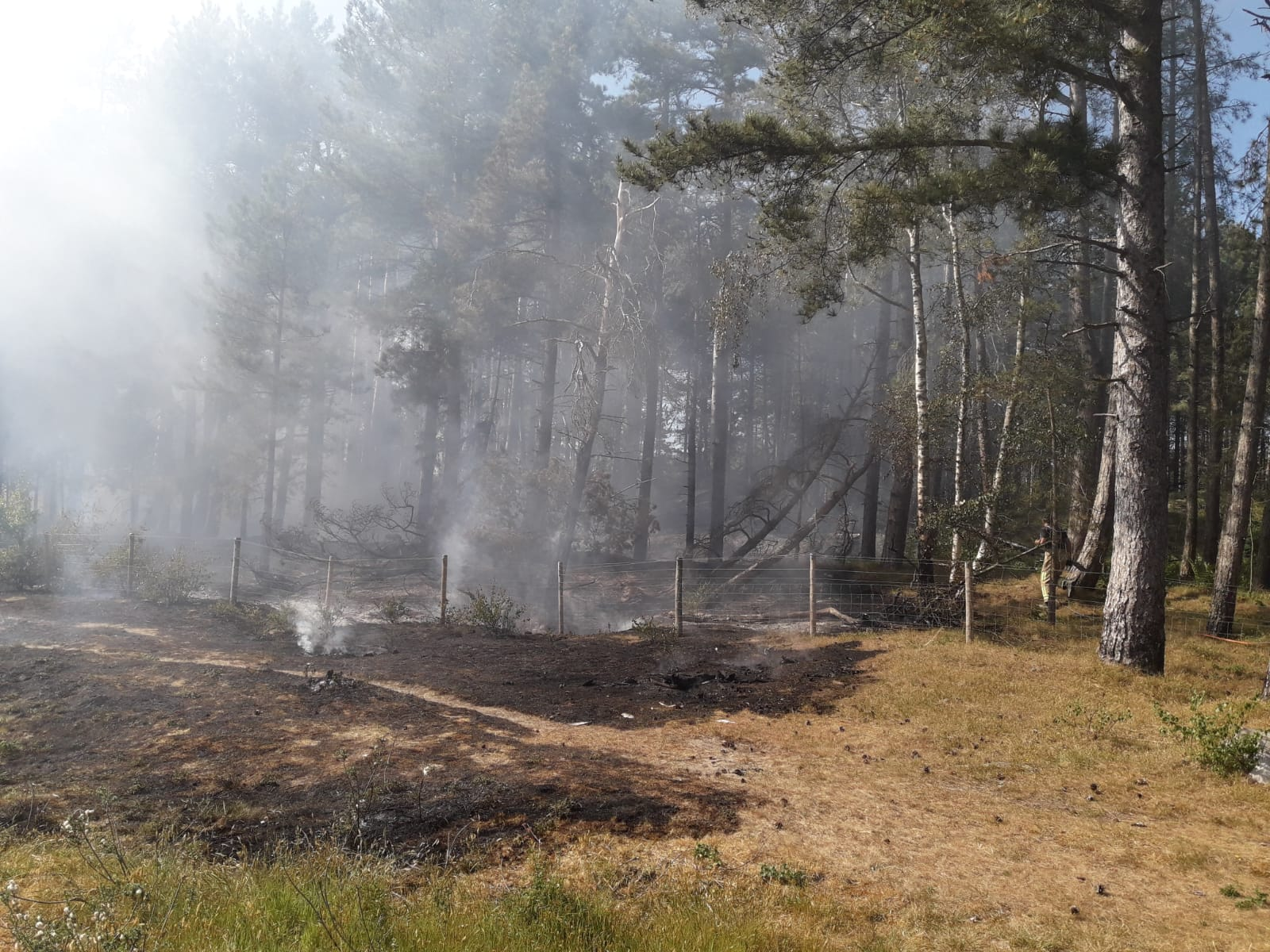 Firefighters have issued a warning after a blaze at Formby Pinewoods