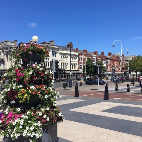 Thousands of flowers in Southport bring colour back after Covid-19 lockdown