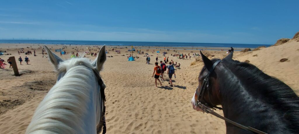 Merseyside Police horses Silver and Oxberry patrol Formby Beach
