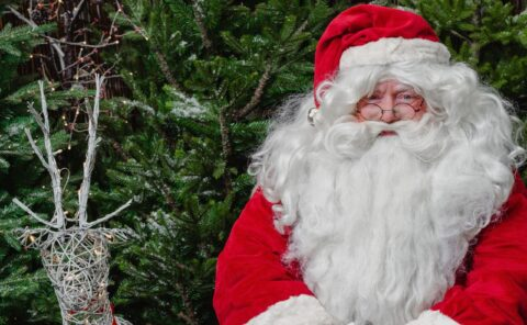 Dobbies in Southport advertises very special Christmas role