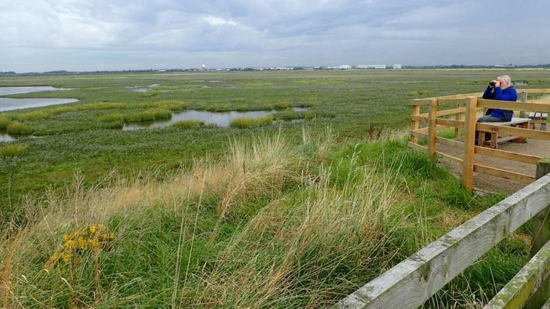Hesketh Out Marsh. Photo by Natural England