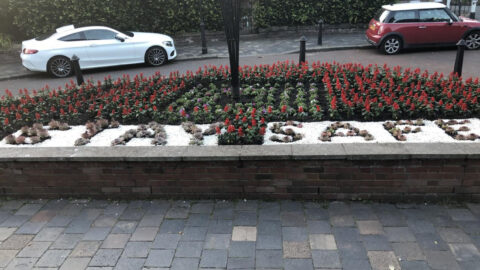 Southport earns North West In Bloom Award as volunteers praised for work during Covid pandemic