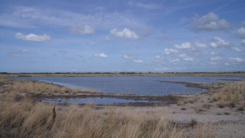 Beautiful RSPB nature reserve home to quarter of a million birds each Winter is extended