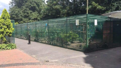 Botanic Gardens Aviary undergoes further improvements thanks to £8,000 donations