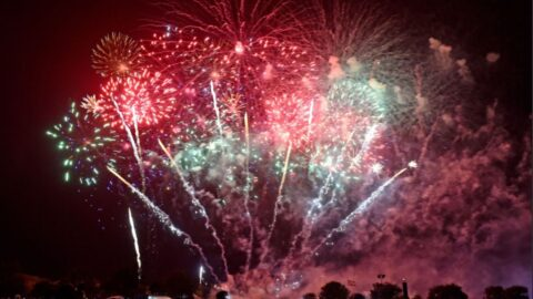 Shops in Sefton urged to stock quieter fireworks to reduce distress for animals