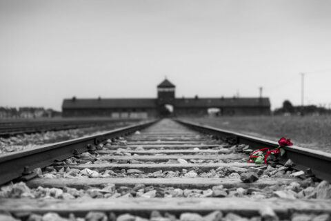 Holocaust Memorial Day 2021 urges everyone to 'Be a Light in the Darkness'