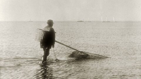 Southport Nostalgia: Southport's shrimping heritage revealed in rare pictures