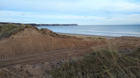 V shaped notches to be dug into Ainsdale Sand Dunes to help protect wildlife