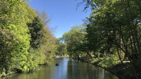 Botanic Gardens in Churchtown to undergo 'major development scheme' to improve historic park