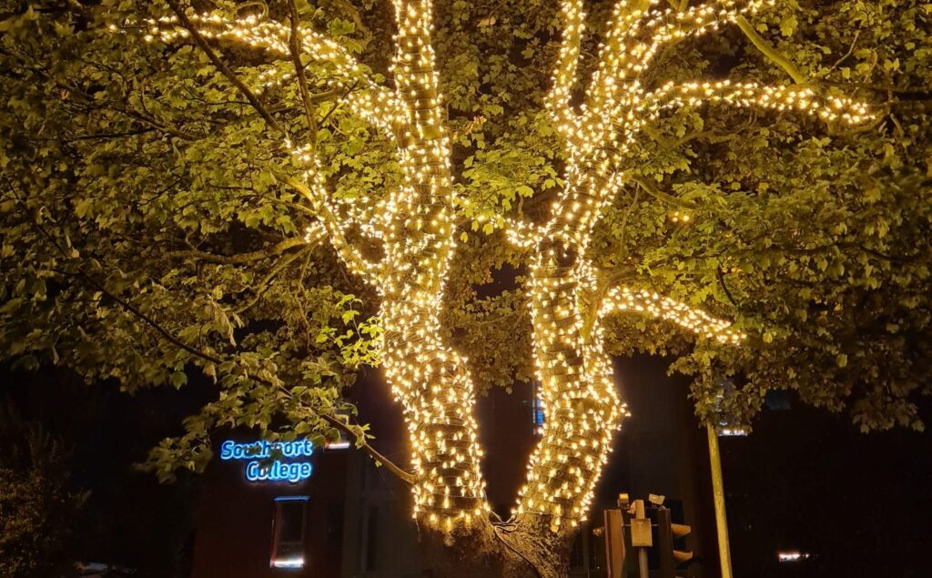 A tree outside Southport College has been lit up by local lighting firm IllumiDex UK Ltd