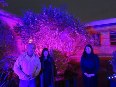 Southport and Ormskirk hospital baby gardens lit up for Baby Loss Awareness Week